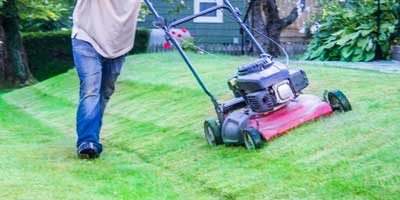 Jaspro Services - Lawn Care and Landscaping
